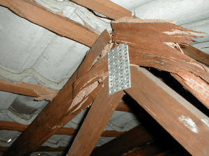 Damaged roof joists
