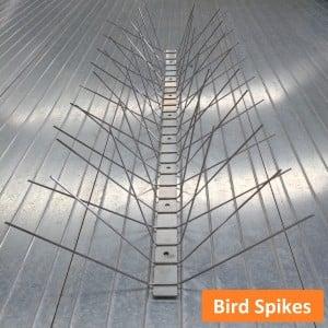Bird Spikes, Spikes, Bird Control, Pest Control